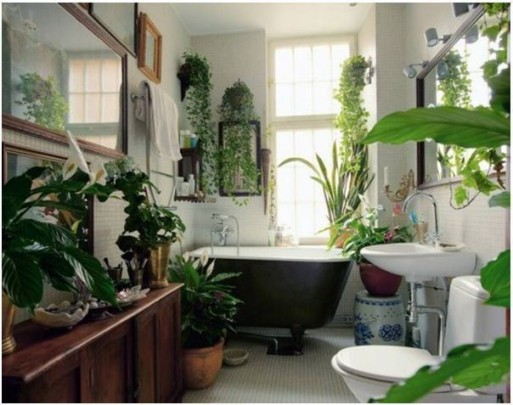 design-tricks-plants-in-the-house-pinterest1